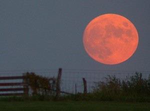 Watch the Lunar Eclipse This Weekend