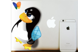 Microsoft Windows vs. Apple OSX vs. Linux